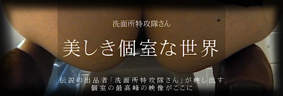 盗撮AV:美しき個室な世界:無修正オマンコ
