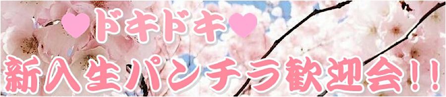 盗撮AV:ドキドキ❤新入生パンチラ歓迎会:無毛おまんこ