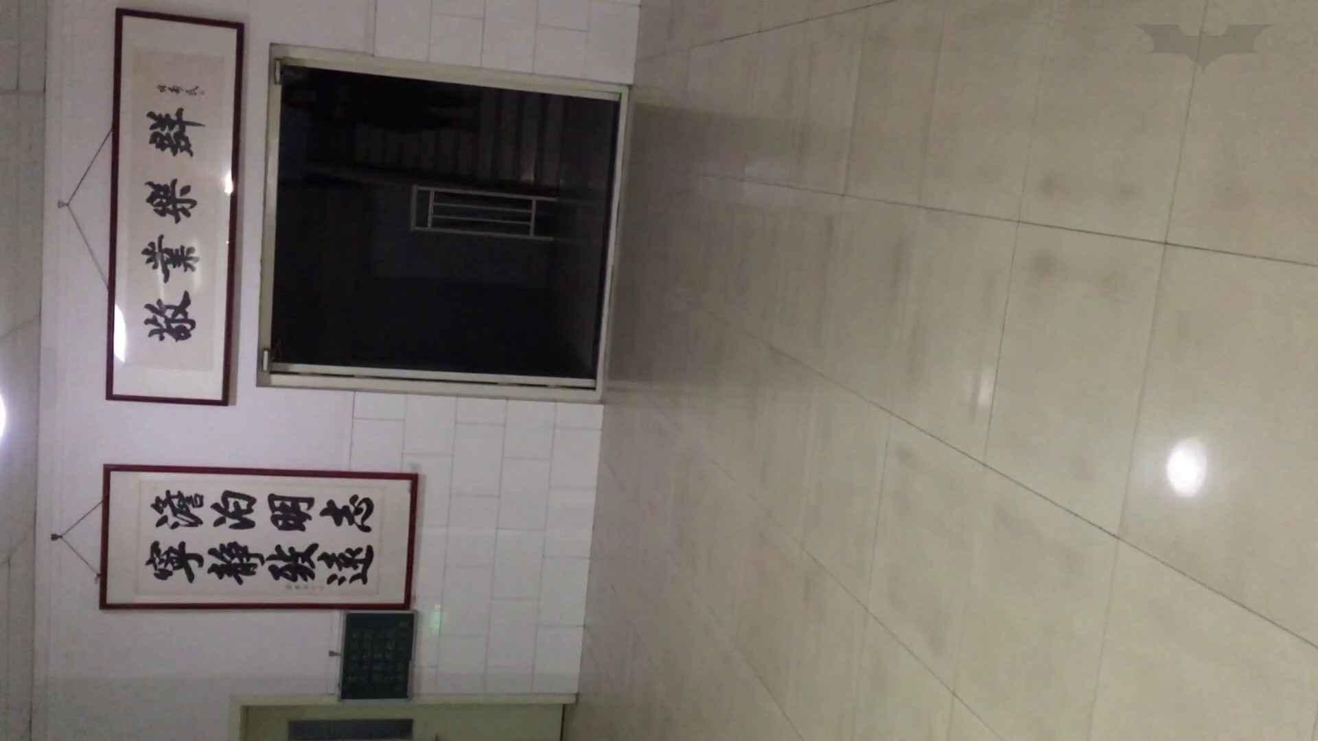 盗撮AV:芸術大学ガチ潜入盗撮 JD盗撮 美女の洗面所の秘密 Vol.85:怪盗ジョーカー