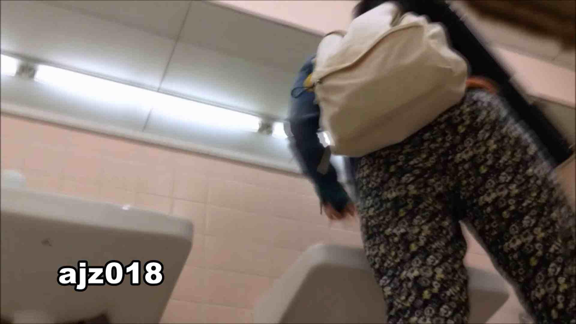 某有名大学女性洗面所 vol.18 洗面所 | 和式  95枚 49