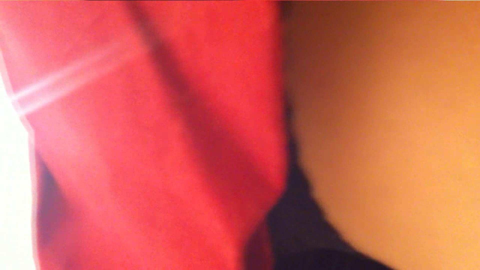 vol.33 美人アパレル胸チラ&パンチラ ギャル系ネーチャンの下着 パンチラ 性交動画流出 53枚 12