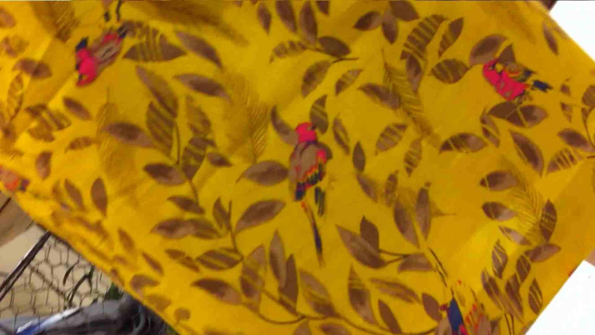 vol.39 美人アパレル胸チラ&パンチラ おねーさんのスカートにモグリたい! チラ オメコ無修正動画無料 108枚 38