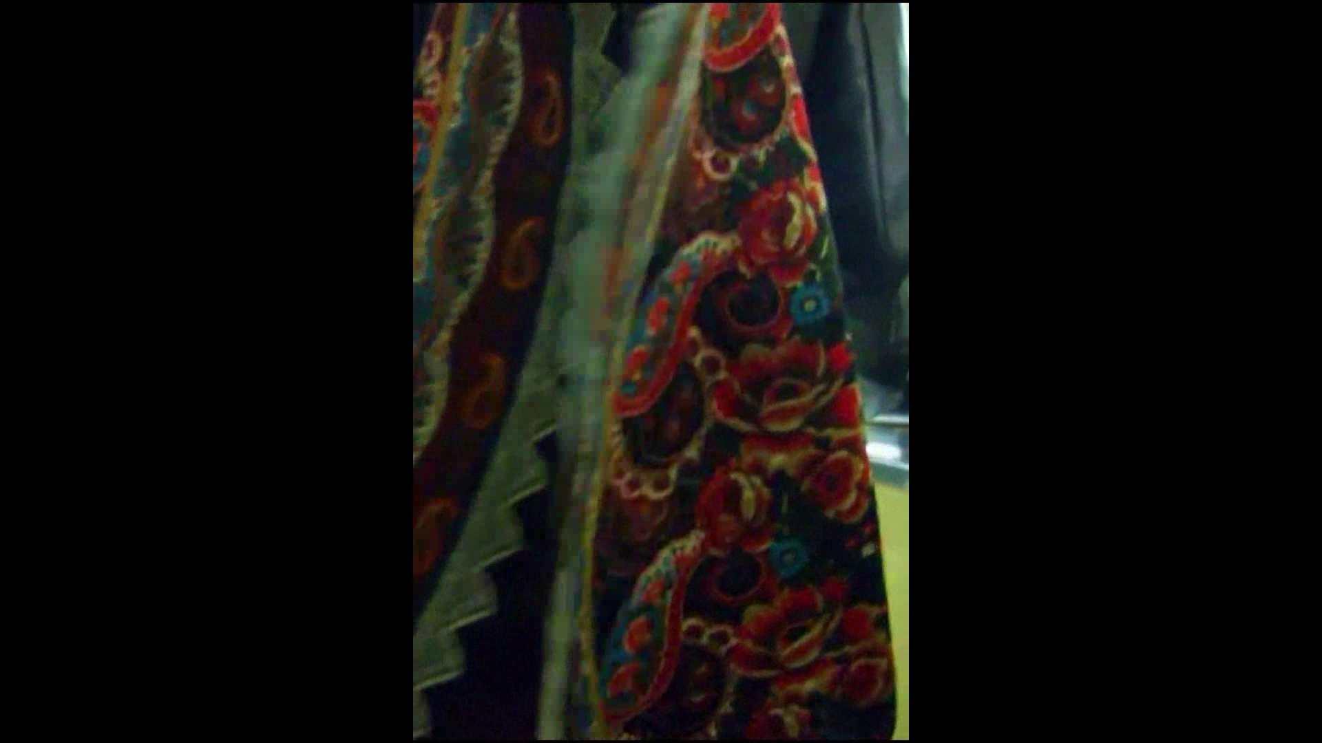 綺麗なモデルさんのスカート捲っちゃおう‼vol05 綺麗なOLたち スケベ動画紹介 98枚 65