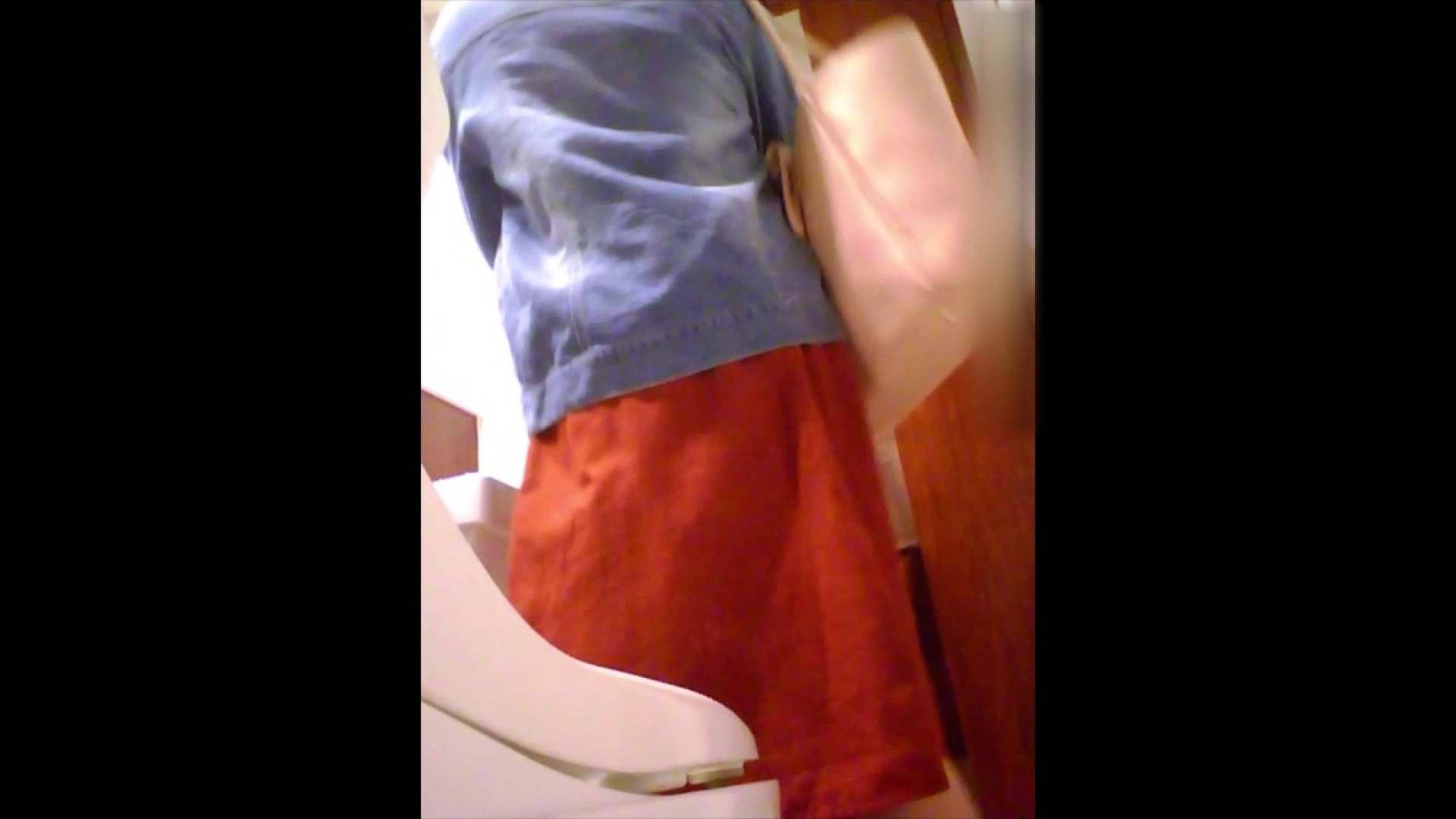 高画質トイレ盗撮vol.04 女子トイレ特別編 アダルト動画キャプチャ 64枚 39