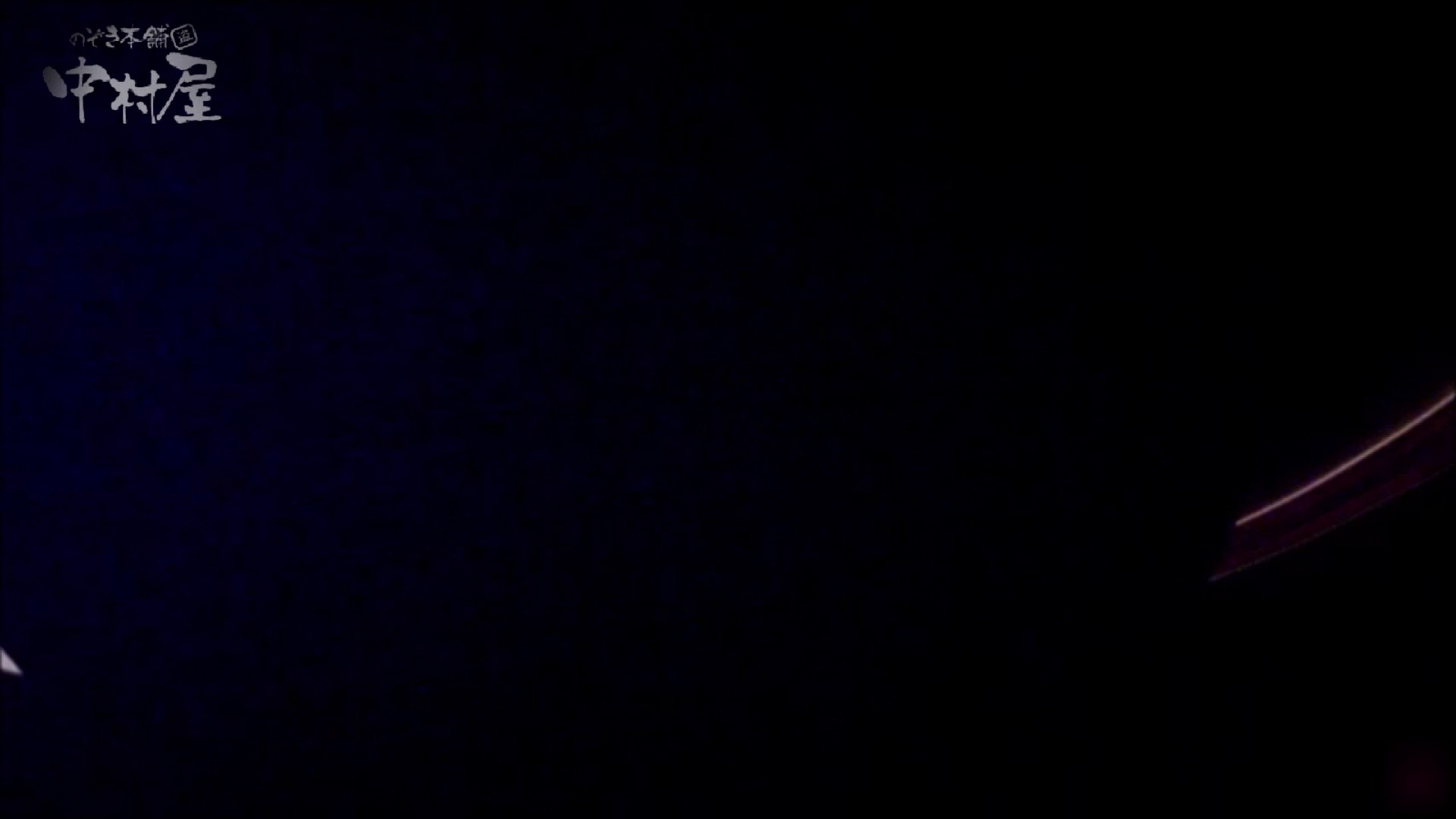 女子トイレ盗撮~某ファミレス編~vol.34 盗撮 覗きおまんこ画像 60枚 28