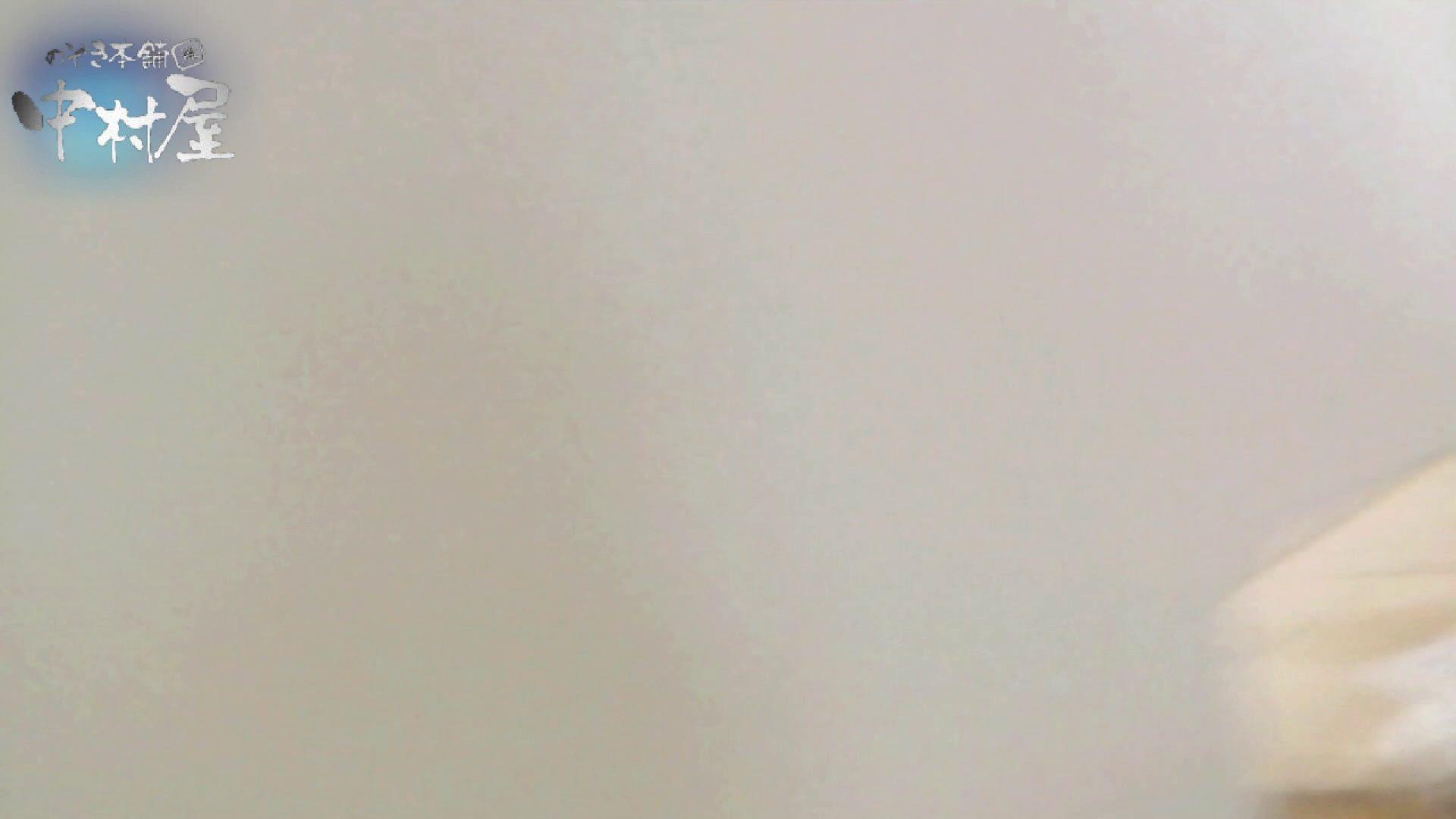 乙女集まる!ショッピングモール潜入撮vol.10 トイレ ワレメ動画紹介 94枚 93