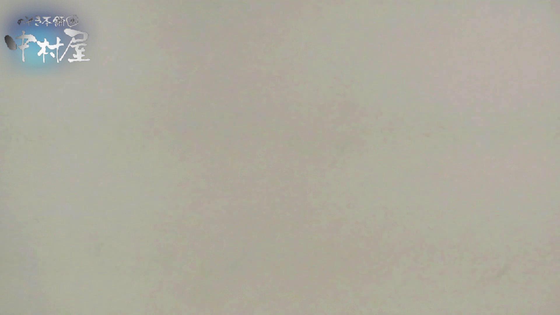乙女集まる!ショッピングモール潜入撮vol.11 和式  97枚 90