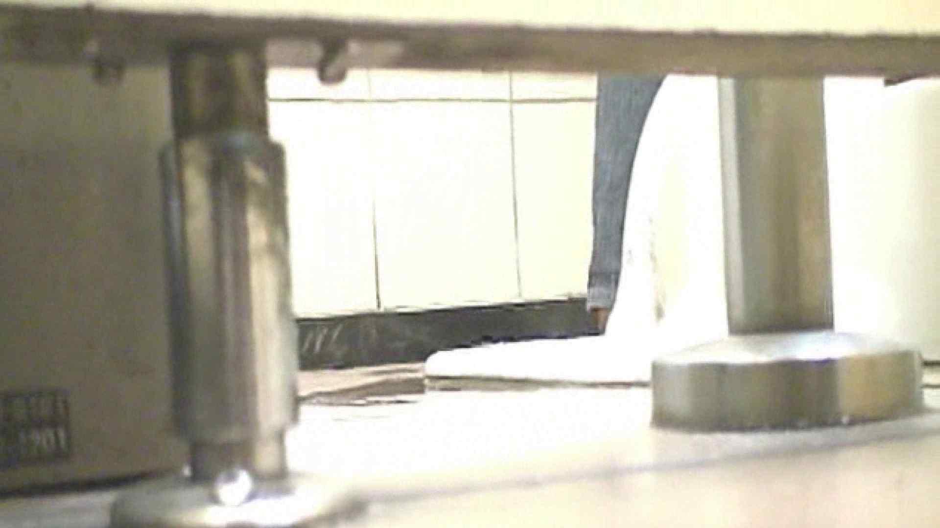 ロックハンドさんの盗撮記録File.38 厠 性交動画流出 95枚 44