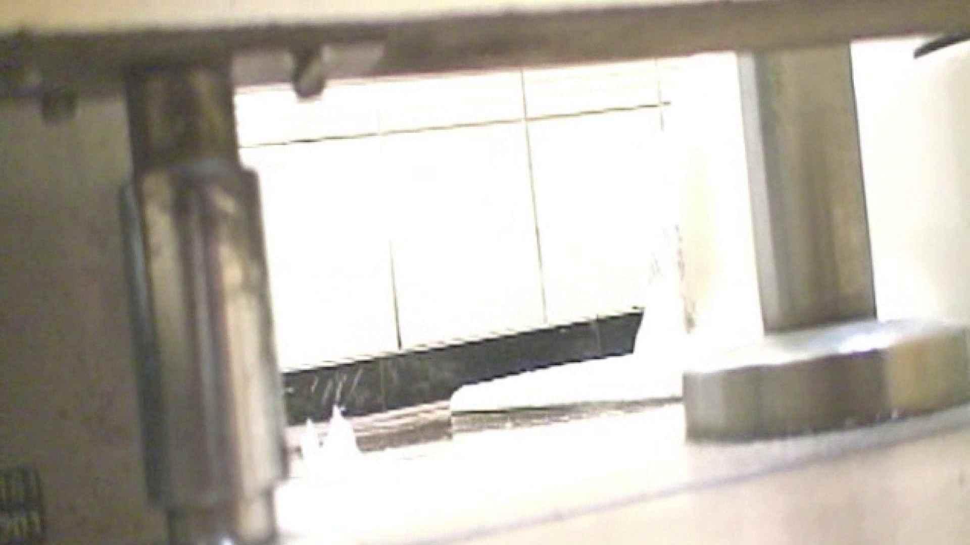 ロックハンドさんの盗撮記録File.38 厠 性交動画流出 95枚 84