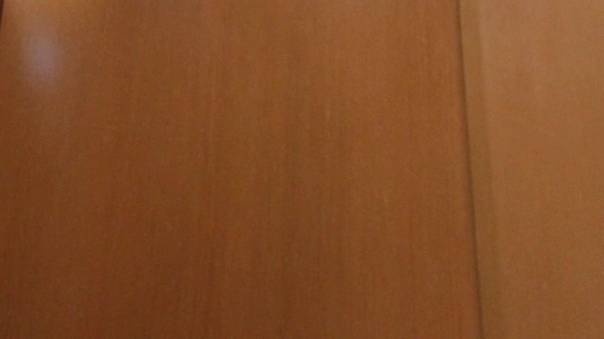 「噂」の国の厠観察日記2 Vol.02 綺麗なOLたち | 厠  96枚 70