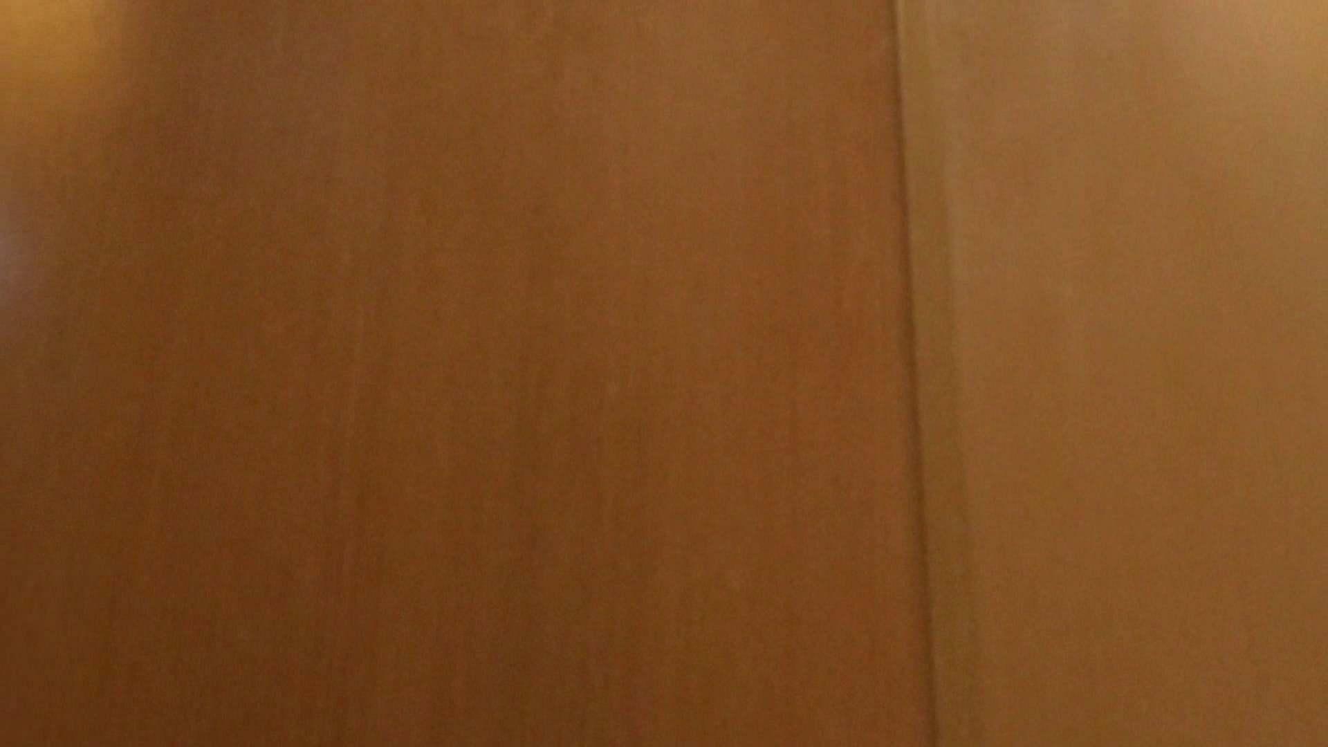 「噂」の国の厠観察日記2 Vol.02 綺麗なOLたち  96枚 93