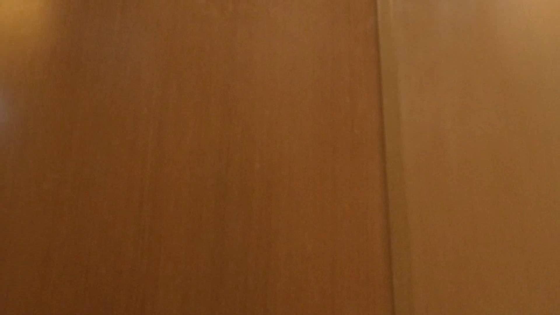 「噂」の国の厠観察日記2 Vol.02 綺麗なOLたち | 厠  96枚 94