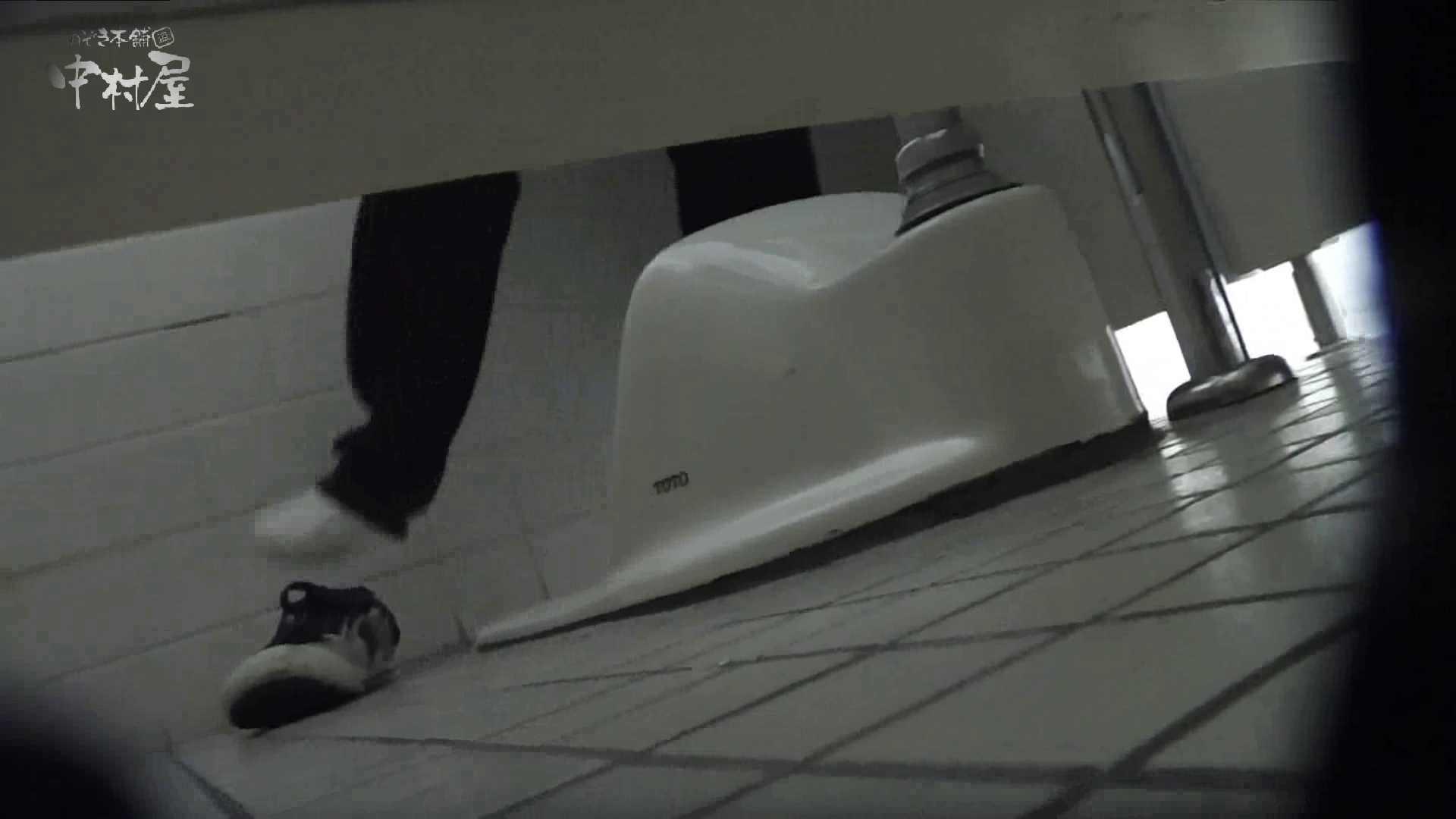 洗面所突入レポート!!vol.8 排泄 ぱこり動画紹介 102枚 17