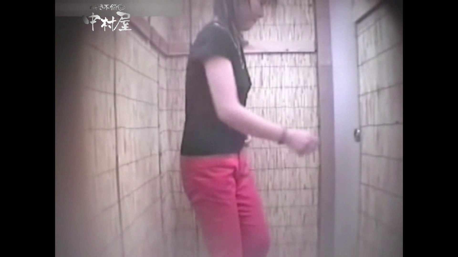 Summer beaches!Toilet peeping!Vol.12 人気シリーズ  102枚 42