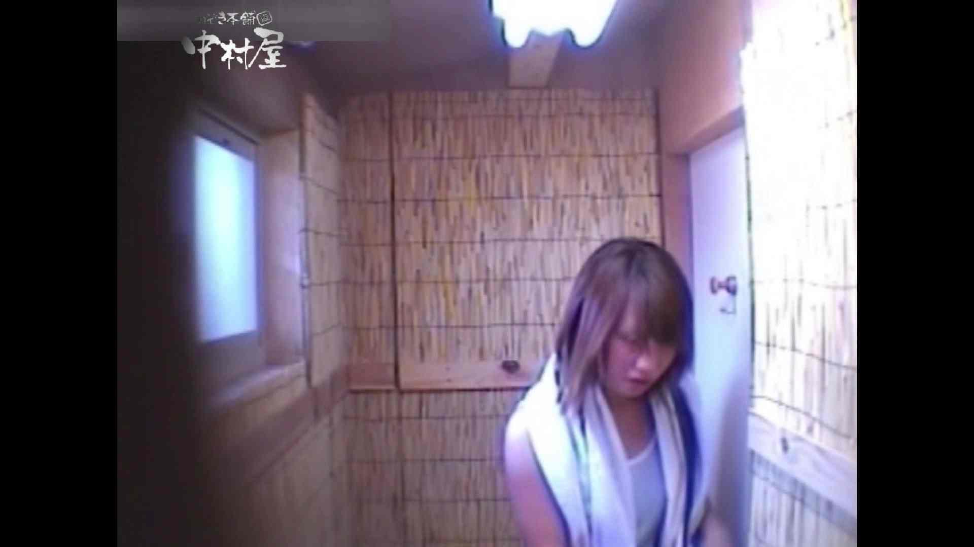 Summer beaches!Toilet peeping!Vol.14 人気シリーズ  51枚 36