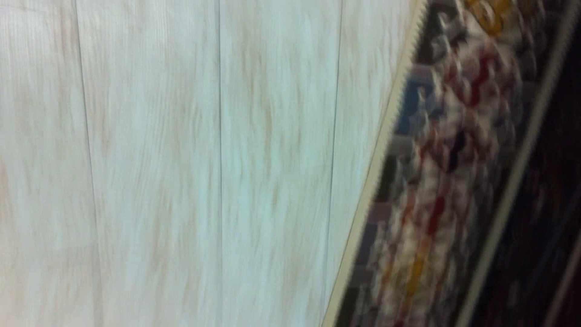 フルHD ショップ店員千人斬り! 大画面ノーカット完全版 vol.19 綺麗なOLたち のぞき動画画像 76枚 18