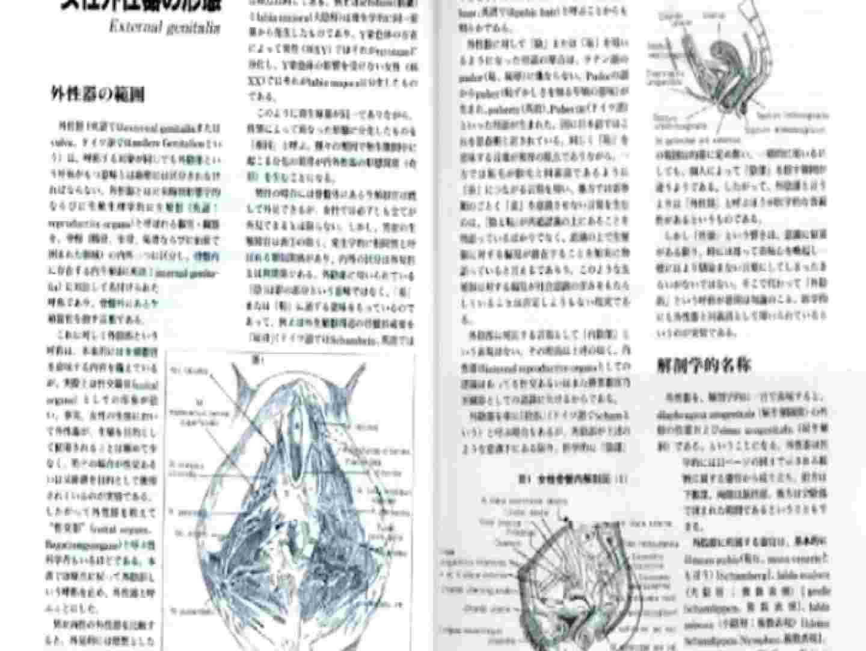 日本女性の外性器① 性器 | 0  84枚 5