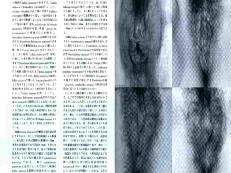 日本女性の外性器① 性器  84枚 24