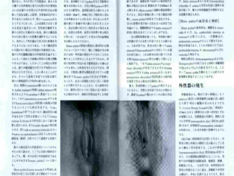 日本女性の外性器① 性器 | 0  84枚 25