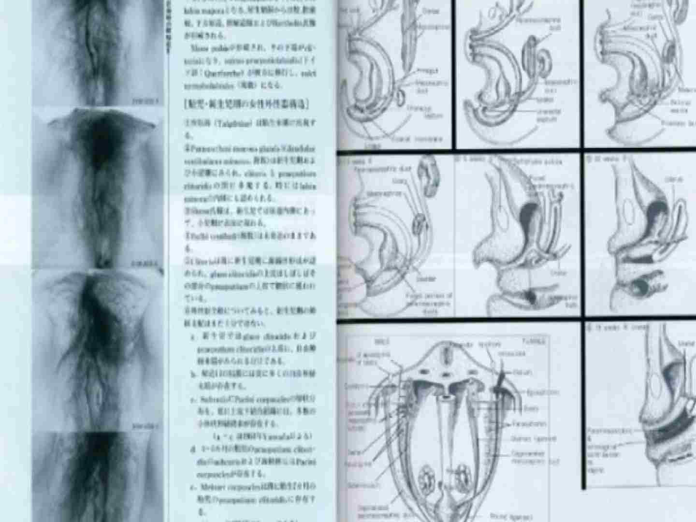 日本女性の外性器① 性器 | 0  84枚 33
