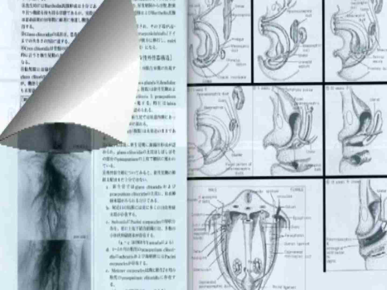 日本女性の外性器① 性器 | 0  84枚 35