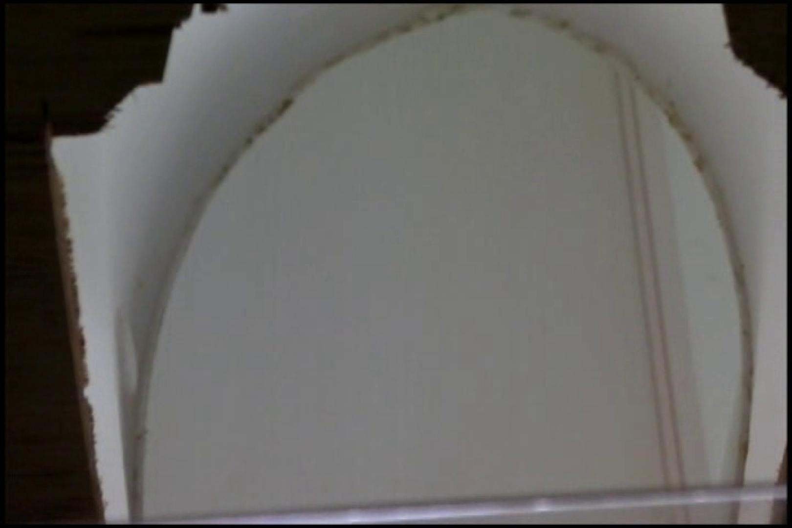 和式にまたがる女たちを待ちうけるカメラの衝撃映像vol.02 厠 ぱこり動画紹介 96枚 63