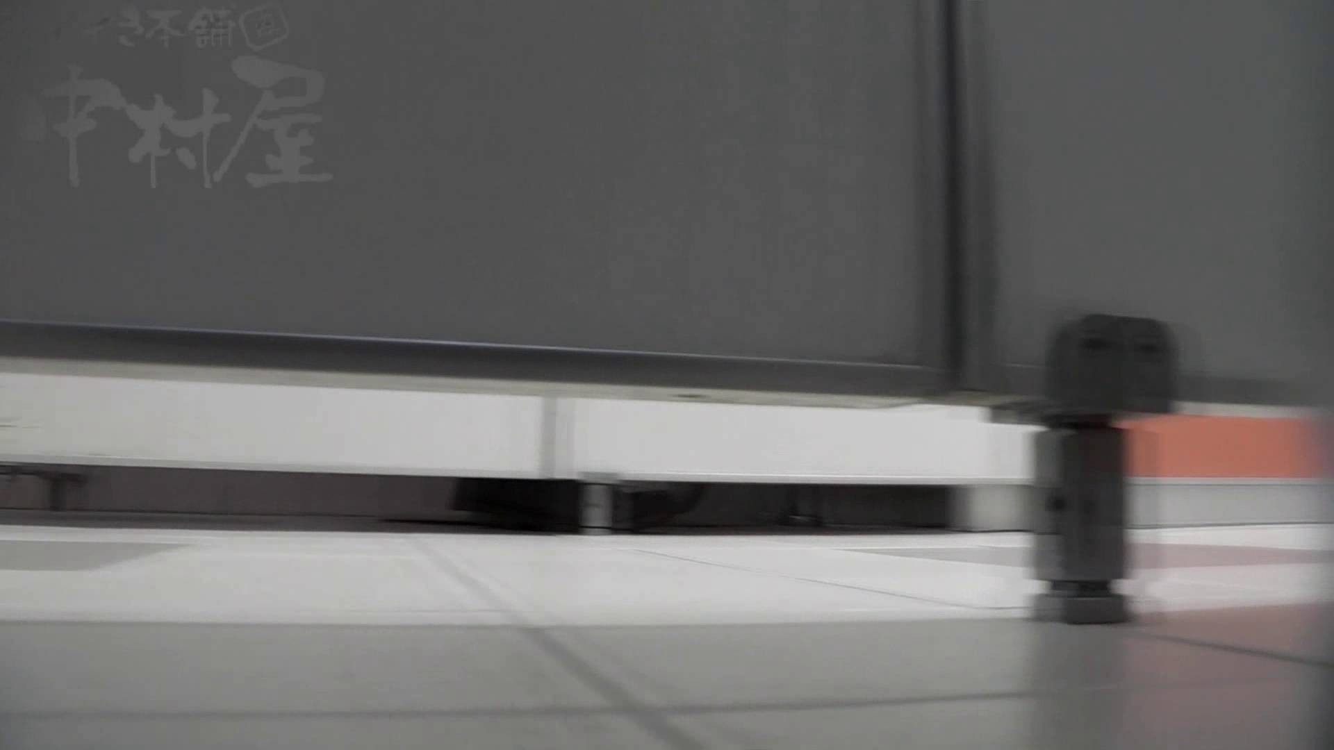 美しい日本の未来 No.06 更に侵入フロント究極な画質 お尻 性交動画流出 104枚 75