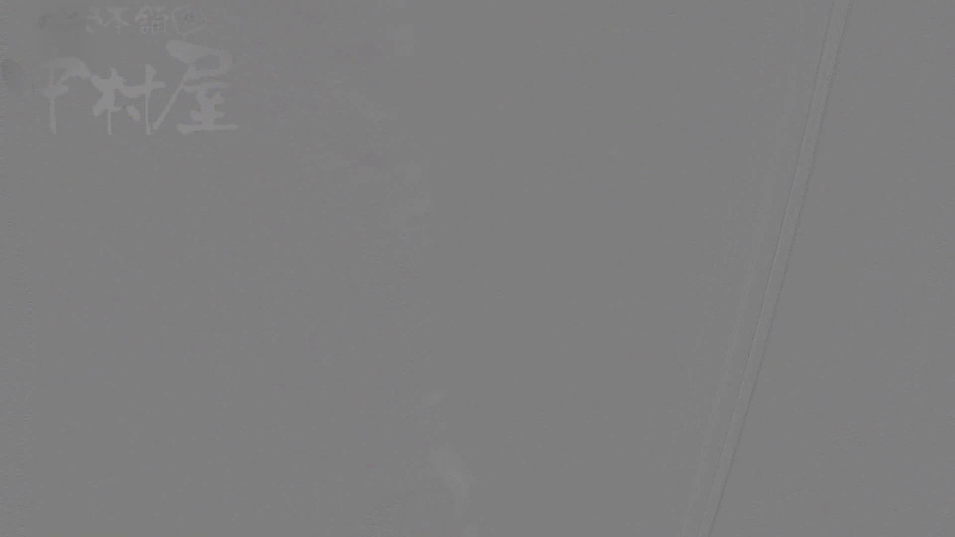 美しい日本の未来 No.17 番外編 ※※※閲覧注意※※※ 盗撮 スケベ動画紹介 71枚 34