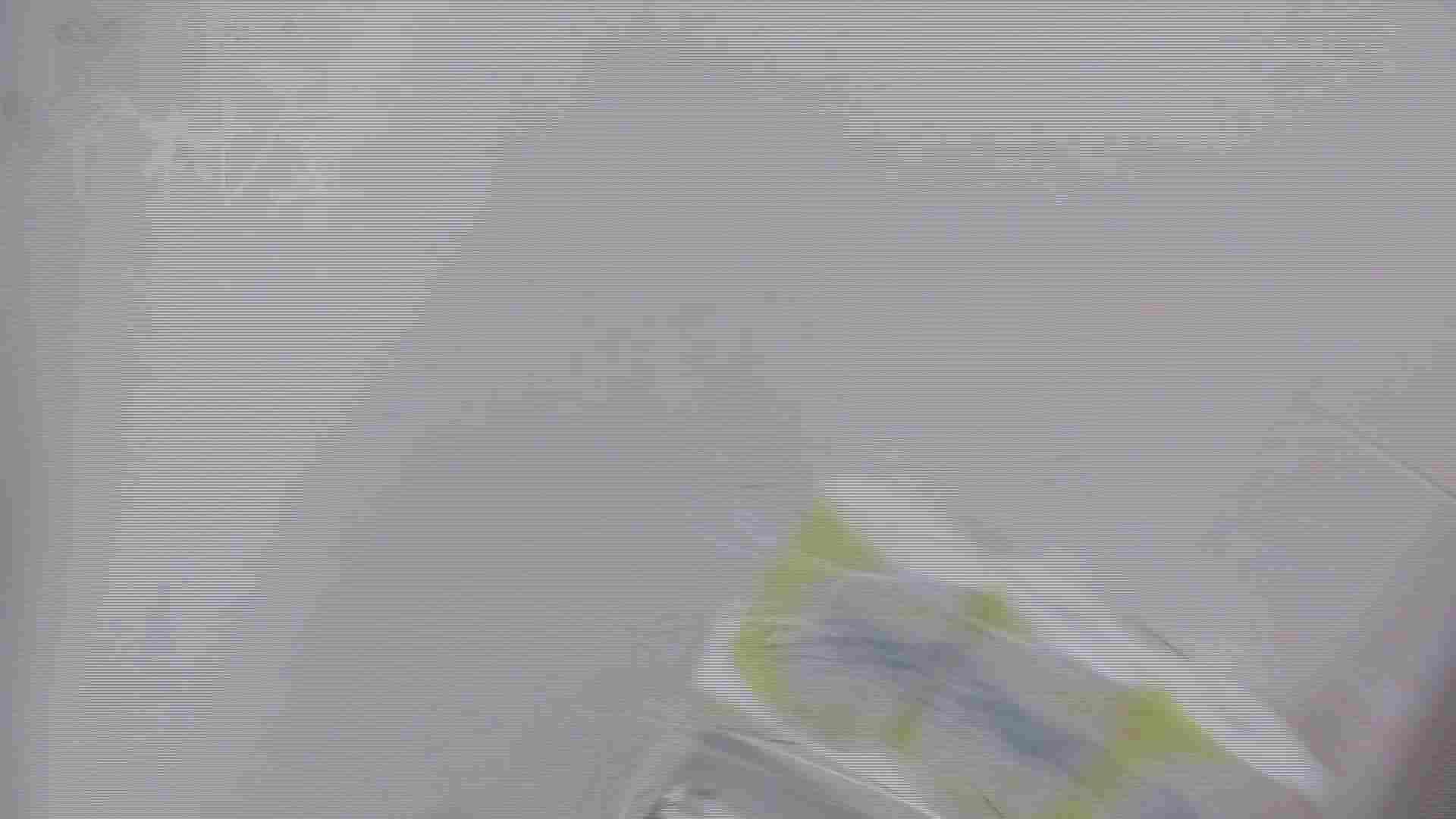 美しい日本の未来 No.17 番外編 ※※※閲覧注意※※※ 高画質 スケベ動画紹介 71枚 36
