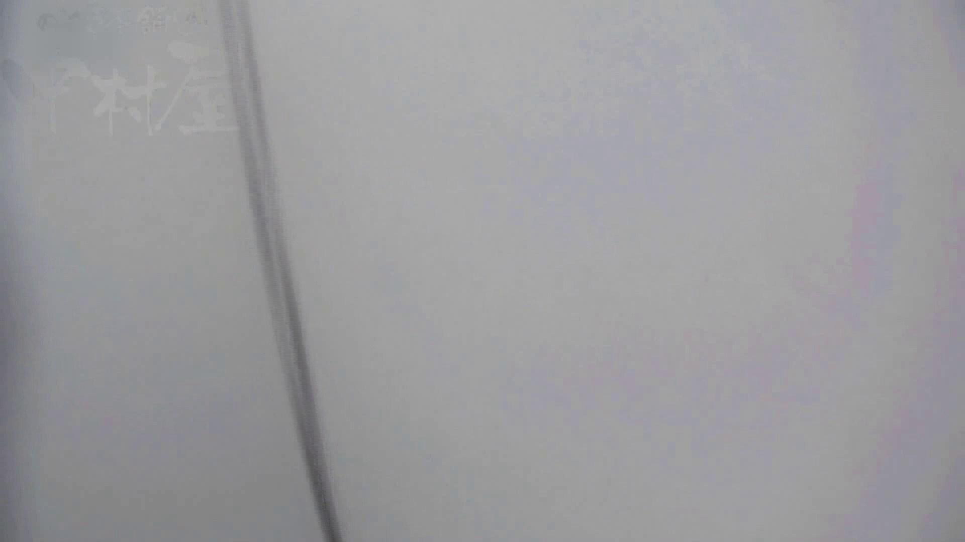 美しい日本の未来 No.17 番外編 ※※※閲覧注意※※※ 女子トイレ特別編 AV無料 71枚 38