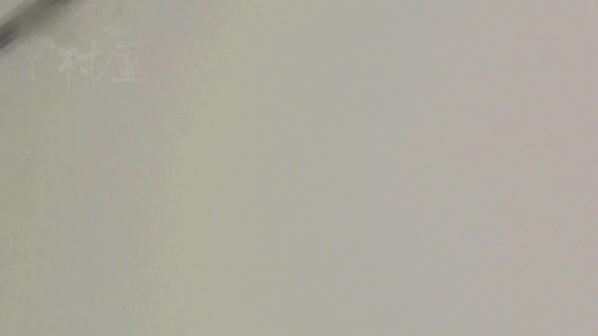 美しい日本の未来 No.17 番外編 ※※※閲覧注意※※※ 排泄 隠し撮りオマンコ動画紹介 71枚 45