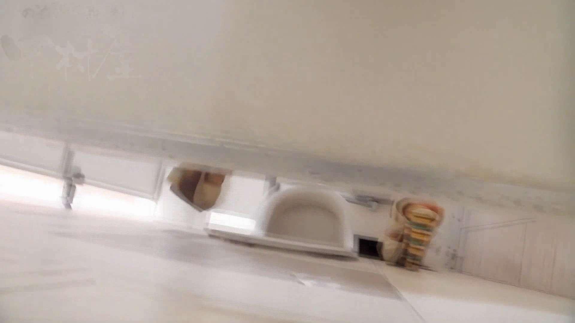 美しい日本の未来 No.20 感謝の気持ちを込めてサプライズ価格!! 丸見え ぱこり動画紹介 51枚 16