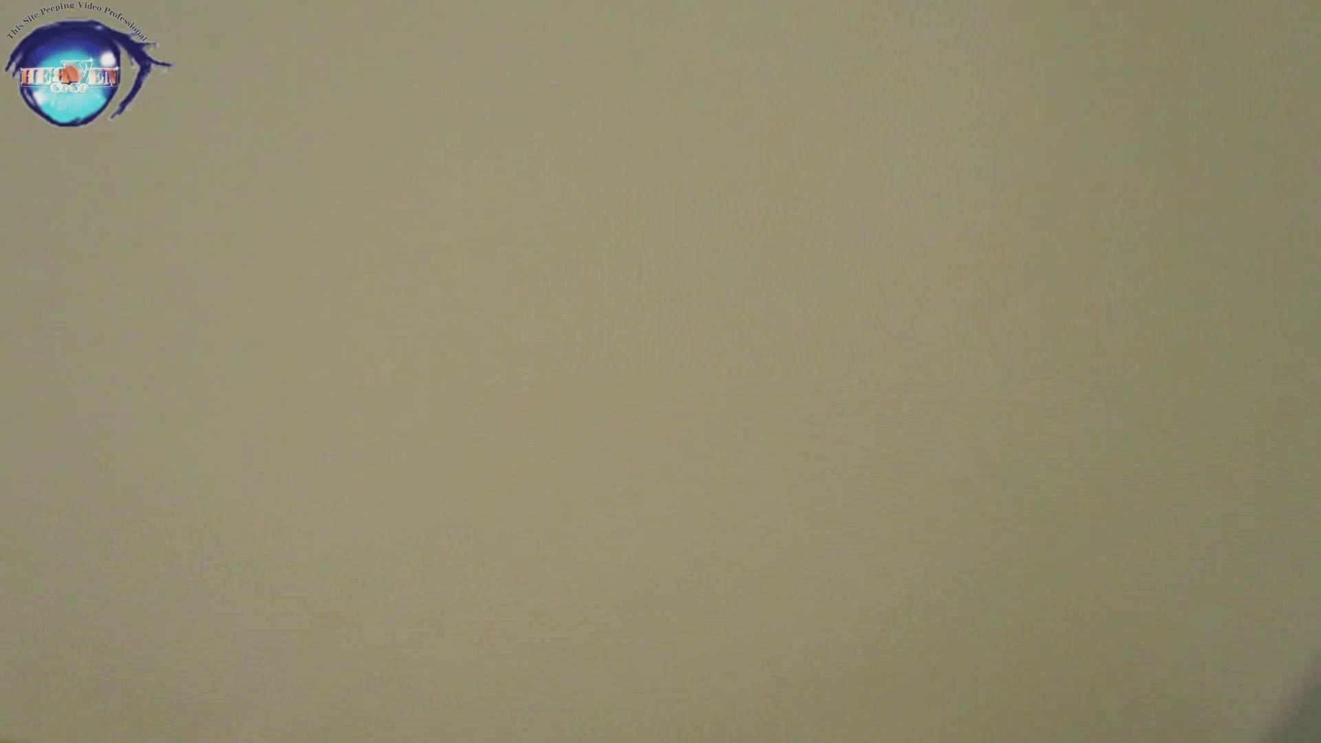 雅さんの独断と偏見で集めた動画集 厠編vol.05 綺麗なOLたち  91枚 60