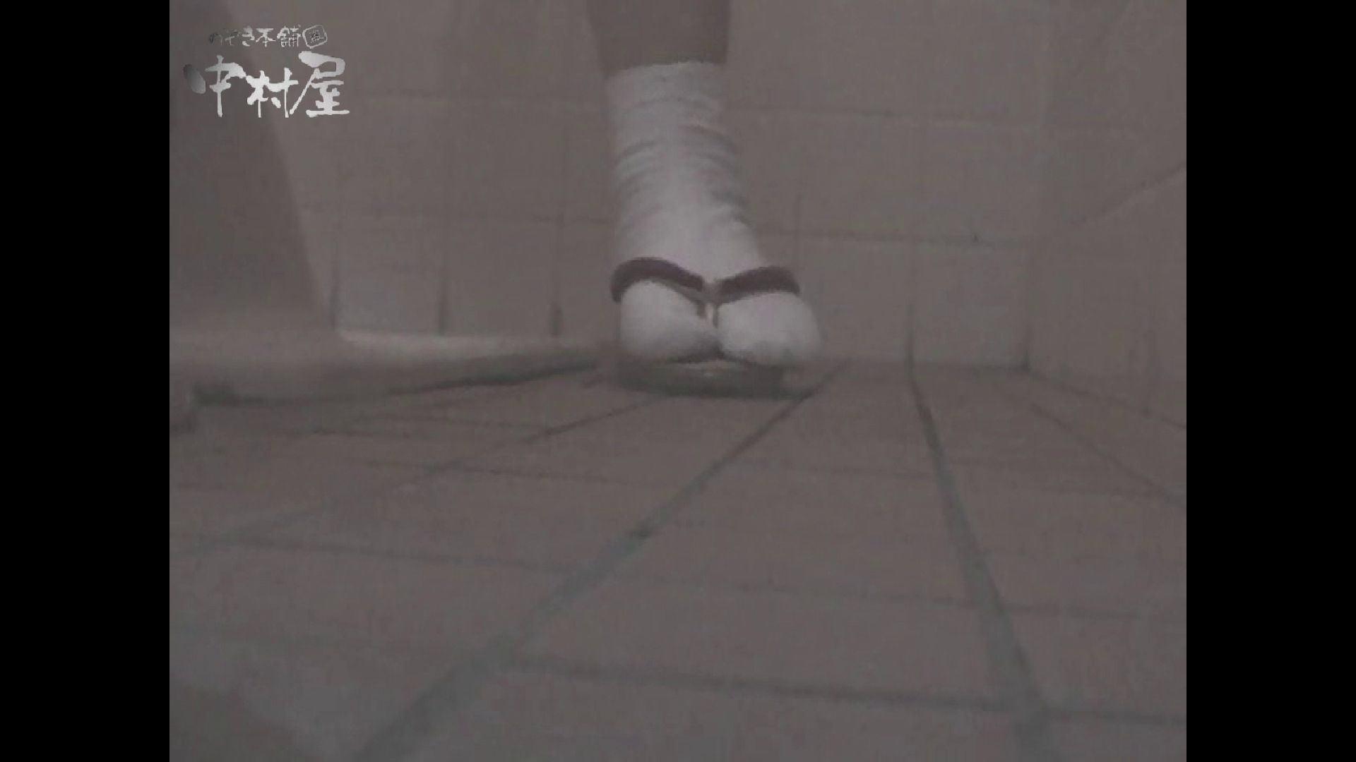 女子トイレ盗撮若い嬢編vol.11 放尿 アダルト動画キャプチャ 102枚 97