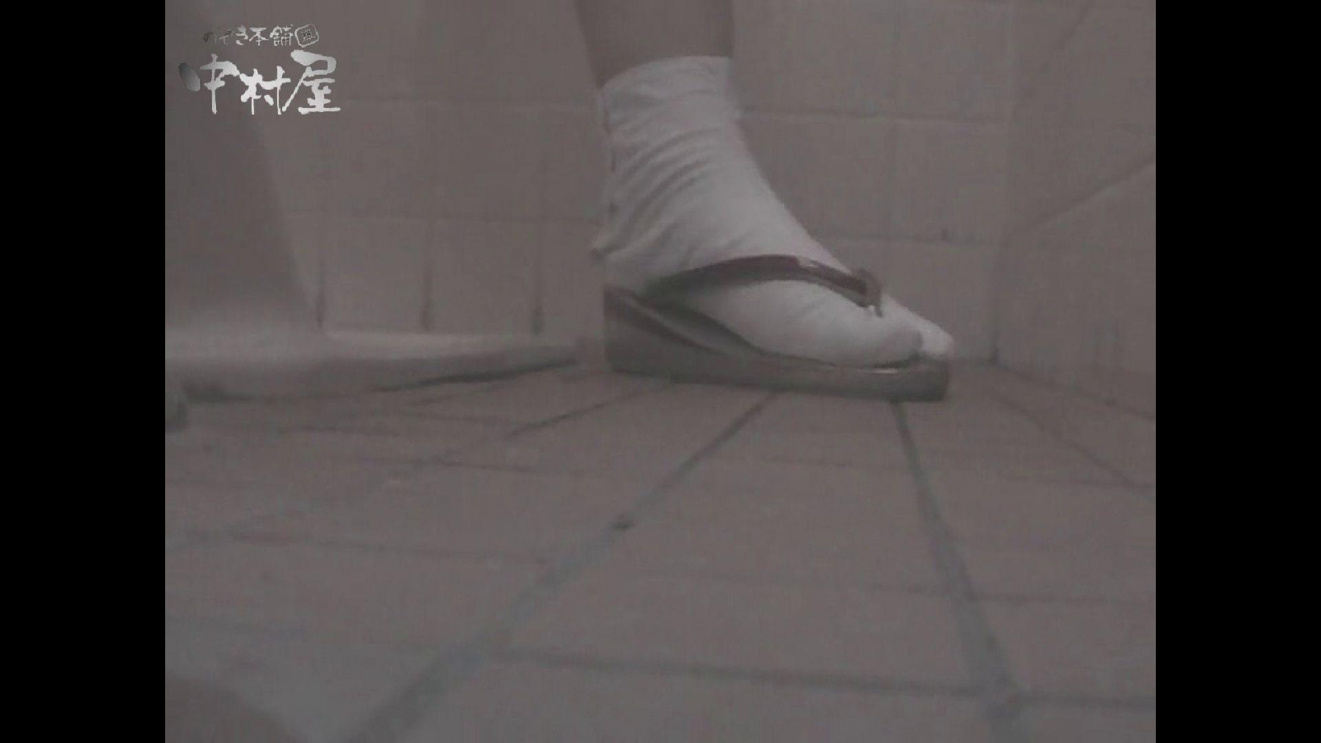 女子トイレ盗撮若い嬢編vol.11 潜入  102枚 99