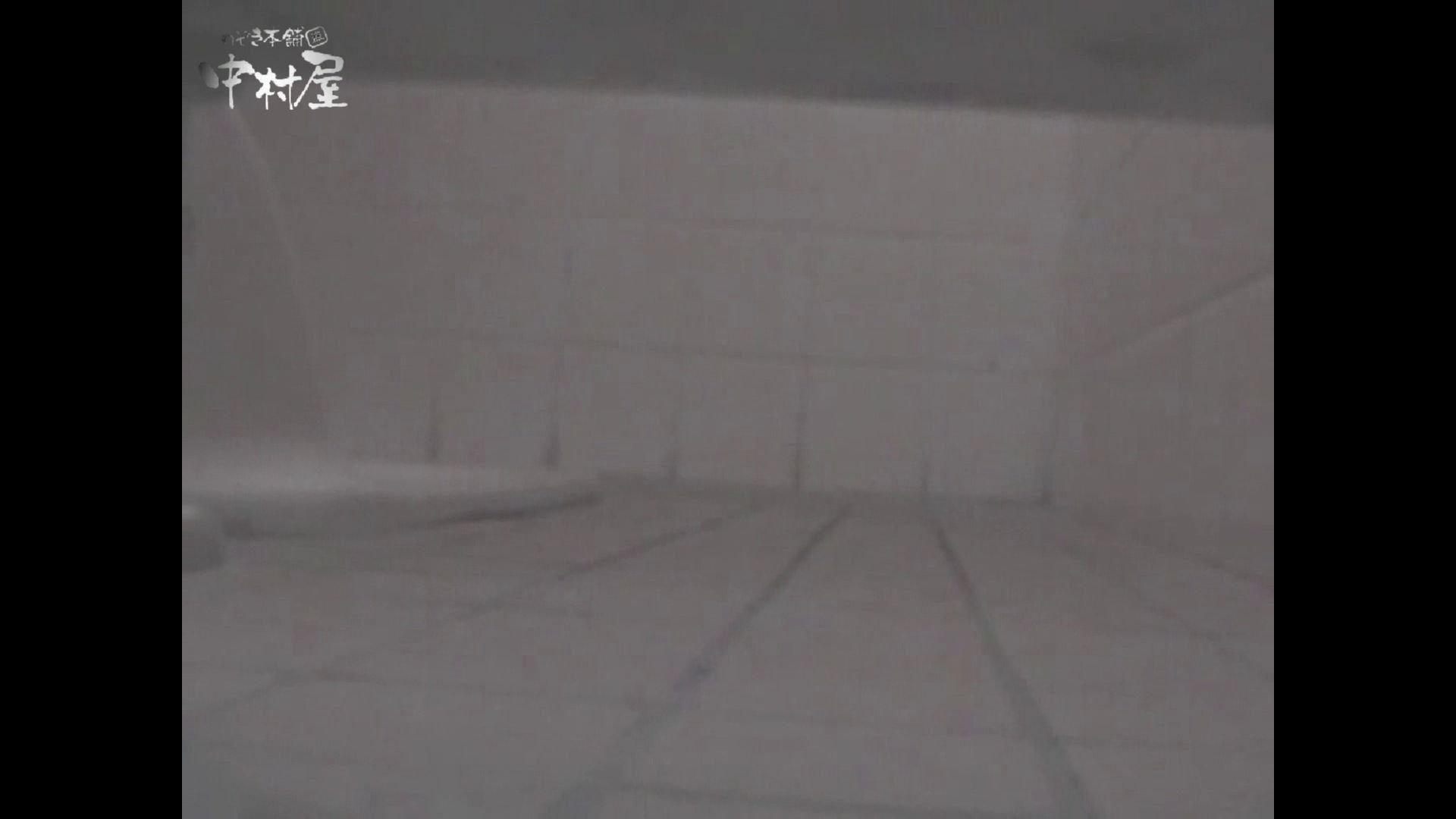女子トイレ盗撮若い嬢編vol.12 マンコ特別編 すけべAV動画紹介 97枚 15