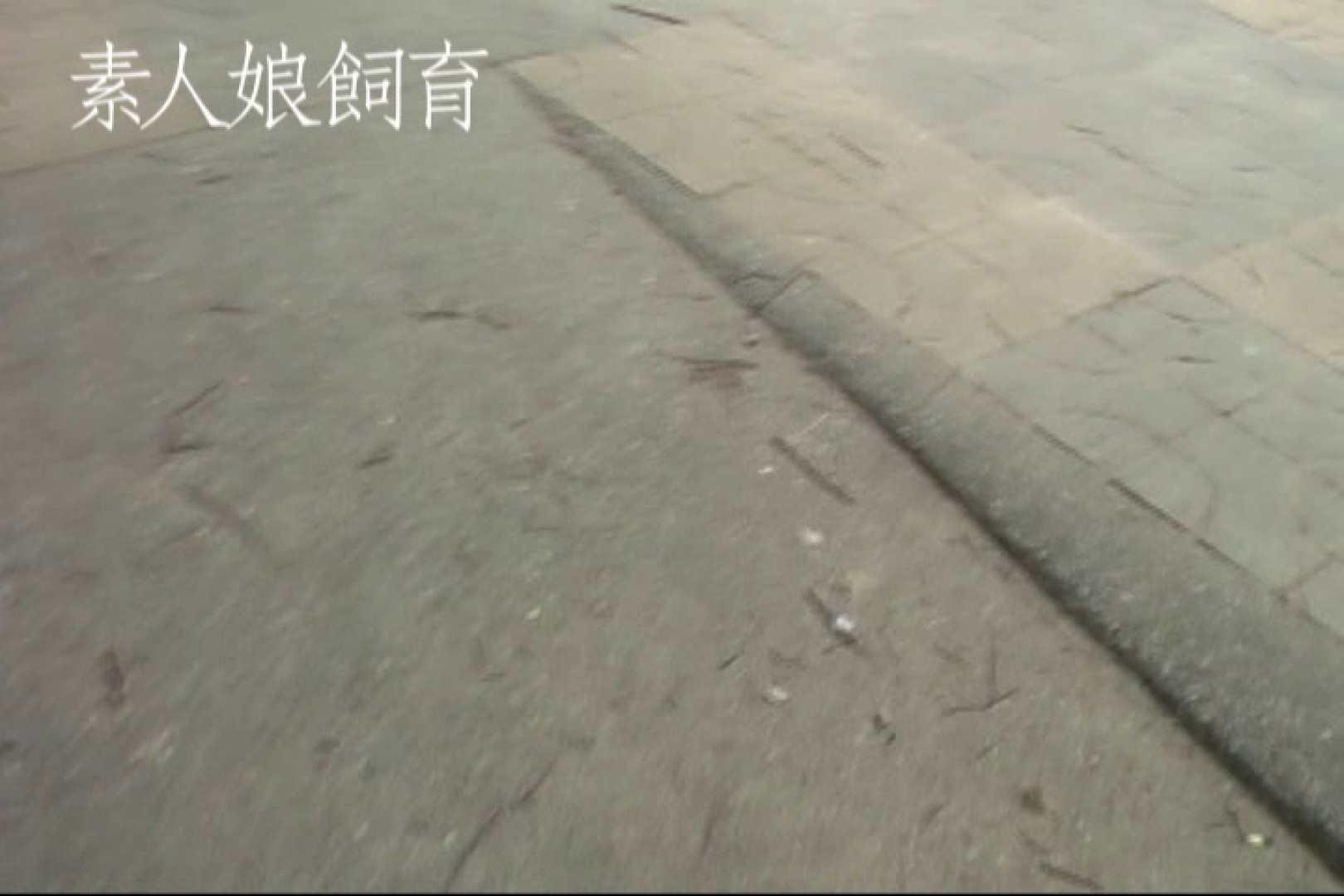 素人嬢飼育~お前の餌は他人棒~野外露出 素人 すけべAV動画紹介 73枚 7