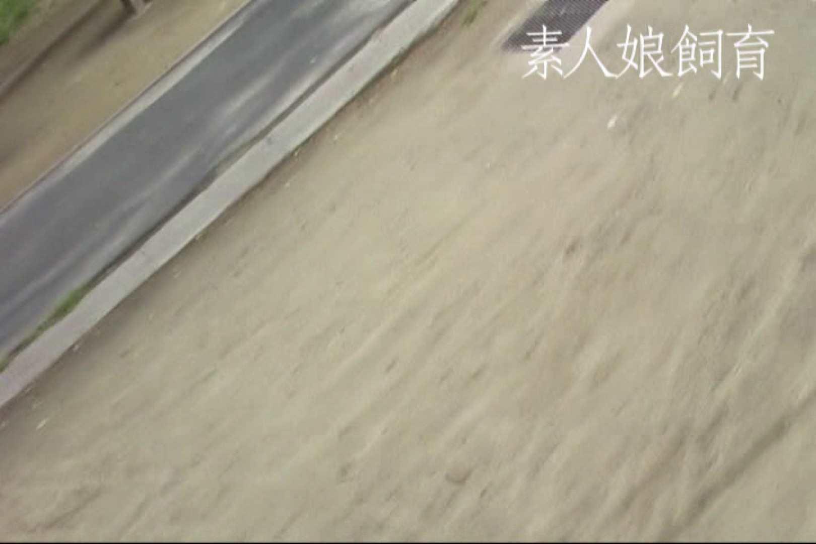 素人嬢飼育~お前の餌は他人棒~野外露出 トイレ われめAV動画紹介 73枚 53