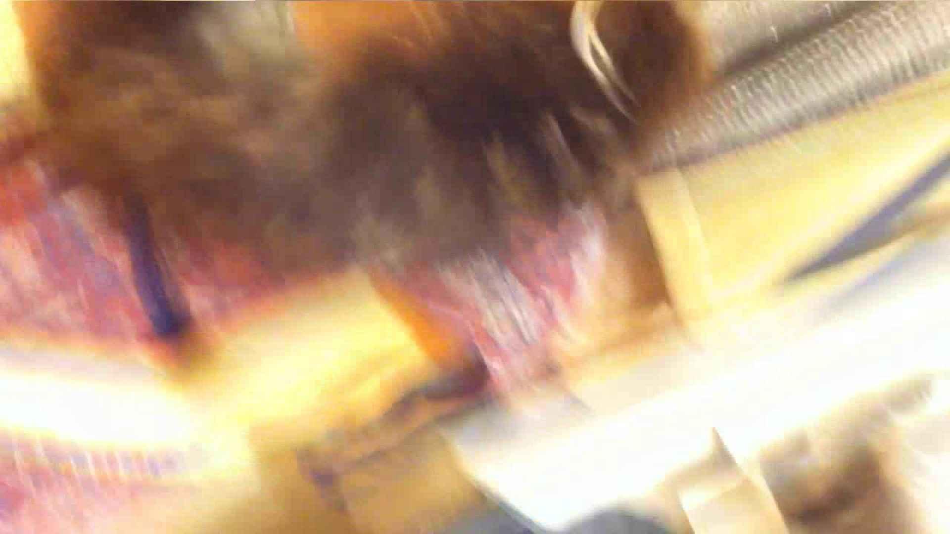 盗撮AV:vol.39 美人アパレル胸チラ&パンチラ おねーさんのスカートにモグリたい!:ピープフォックス(盗撮狐)