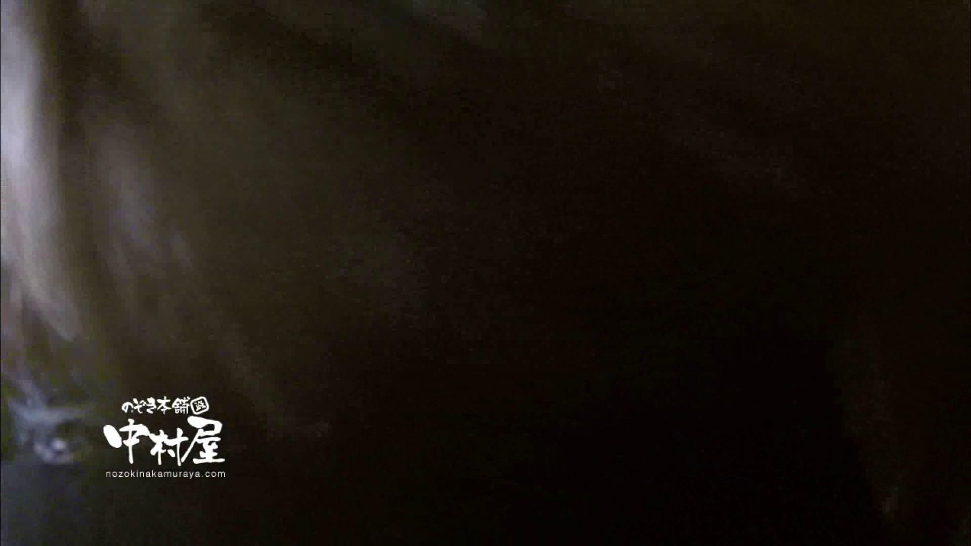 盗撮AV:鬼畜 vol.11 下の口は正直なオンナ 後編:ピープフォックス(盗撮狐)