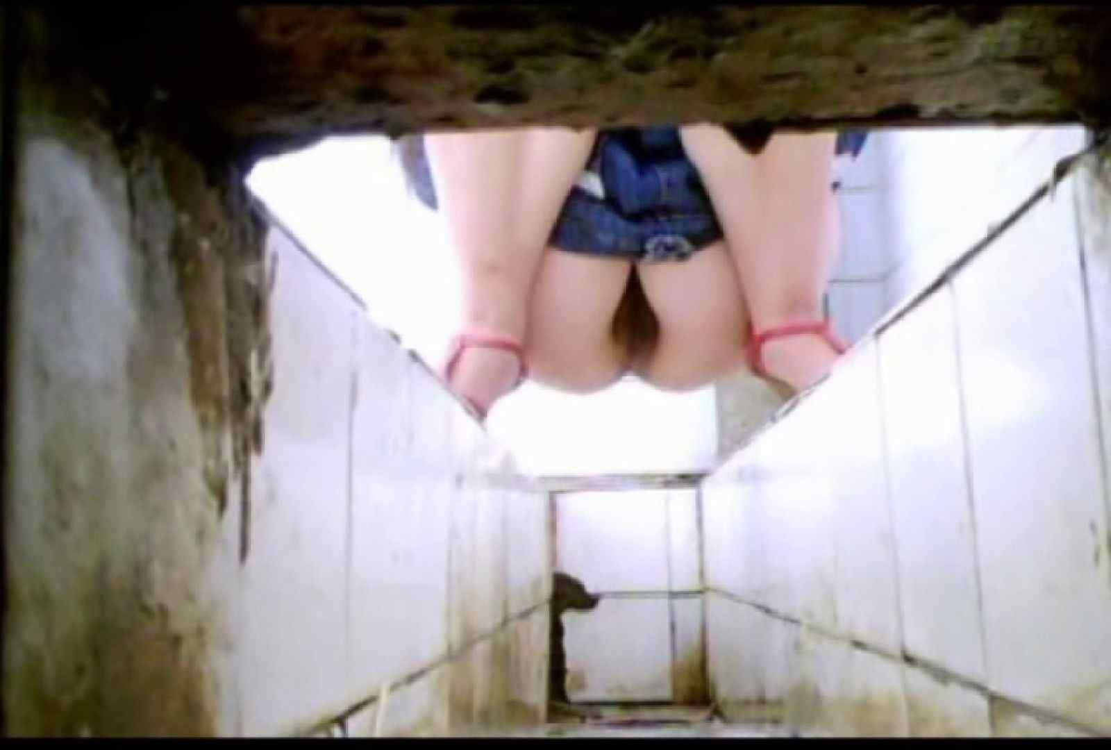 盗撮AV:洗面所で暗躍する撮師たちの潜入記Vol.2:ピープフォックス(盗撮狐)